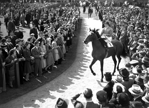 One of 15 Consecutive Triumphs: The Newmarket, 1946.