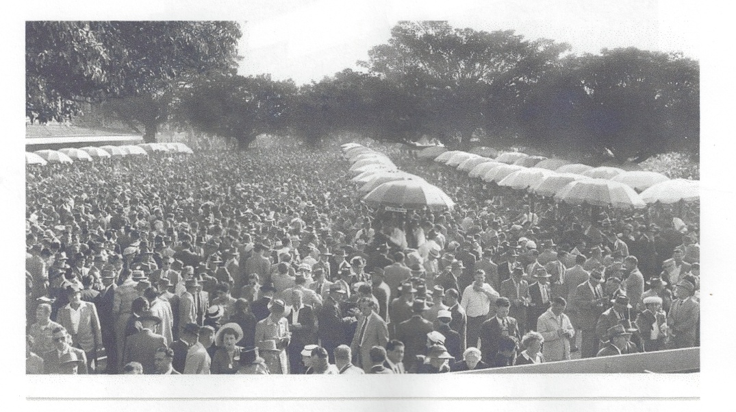 Ern's Picture of the crowd on a big race day at Randwick in 1953.