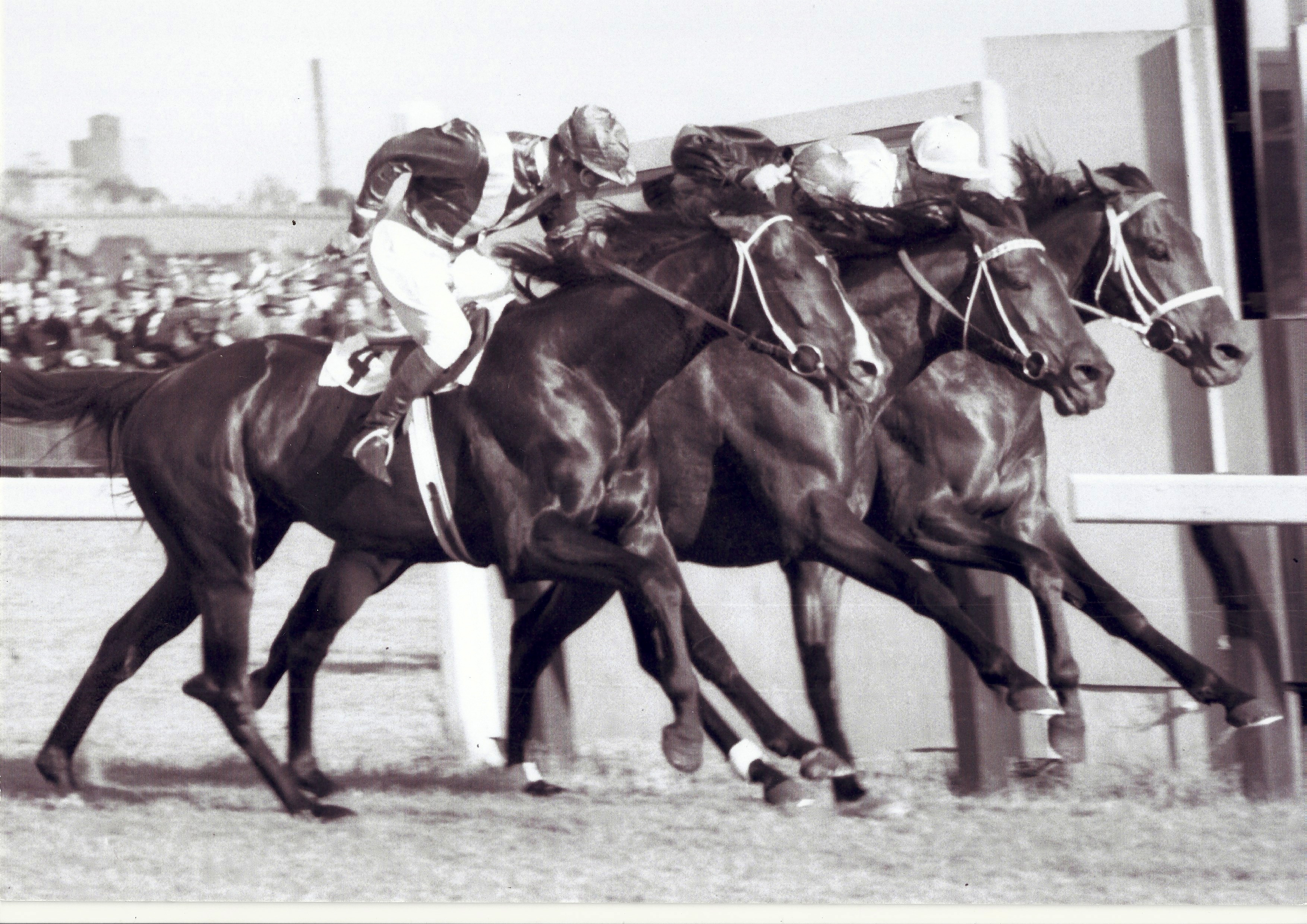 The first Australian triple dead heat. Ern was there. This is his visual record.